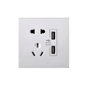 2-Pin & 2-pin plus grounding socket with double USB power(DC5V2.4A,Custom)