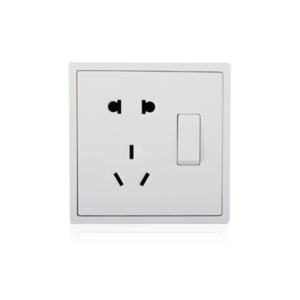 2-pin socket with grounding plus 2-way switch