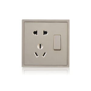2-pin socket with grounding plus 2-way switch Champagne